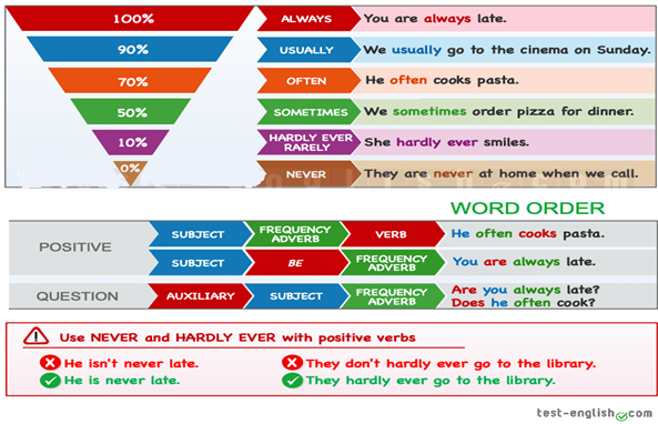 ADVERB OF FREQUENCY (English for 5th Grade)